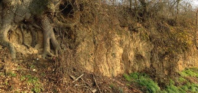 Geologische Voraussetzungen in Deutschland